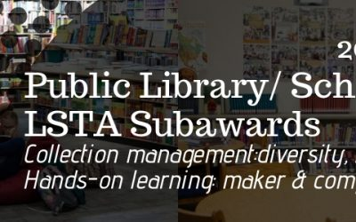Public Library & Public School LSTA Subawards Now Available